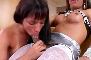 Big Ass She-Male Road Trip 14, Scene 03