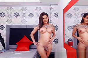 filthy busty Inked tranny naked And Teasing