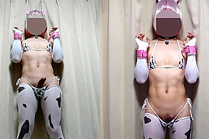 New cow costume and milked