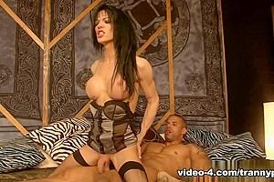 Jordan Jay in Monsters Of Shemale Cock #32 - Part 01